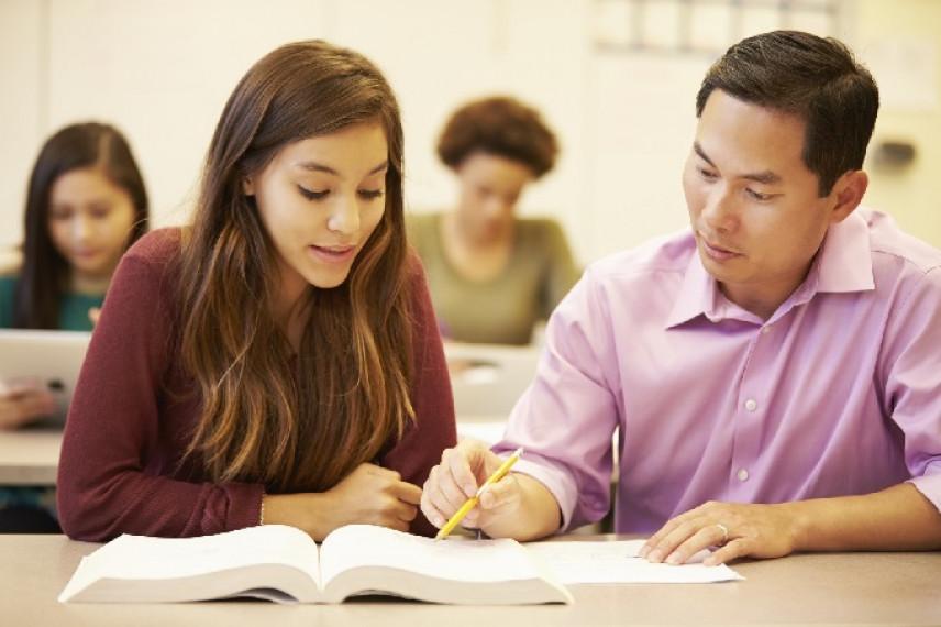 Введенная в Казахстане система наставничества показывает положительные результаты