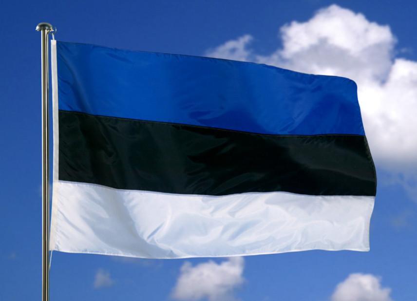 В Эстонии предложили сократить половину госслужащих