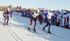 Зимняя спартакиада госслужащих проходит в Омской области