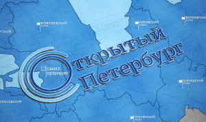 В Петербурге продолжается онлайн-голосование за звание лучшего района