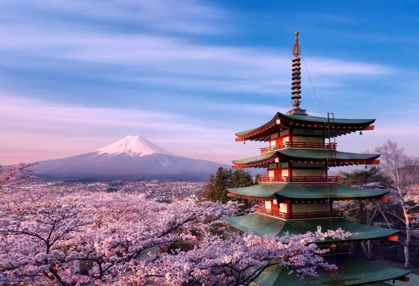 Госслужащим Японии будут рекомендовать брать декретный отпуск