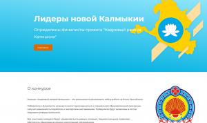 Участники проекта «Кадровый резерв Калмыкии» готовятся к финалу