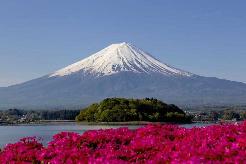 В Японии министр-мужчина впервые в истории страны уйдет в декретный отпуск