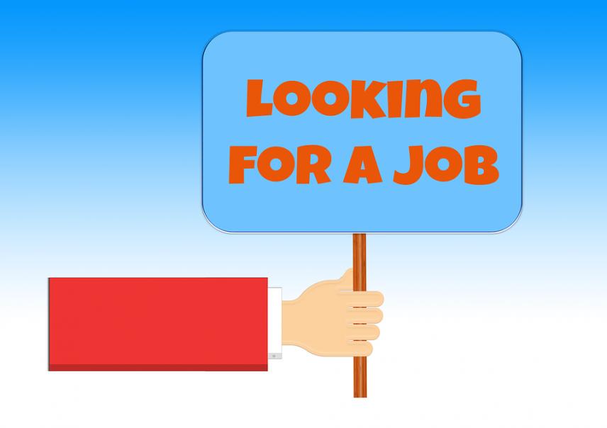 Эксперты рассказали о ситуации на рынке труда и поделились прогнозами