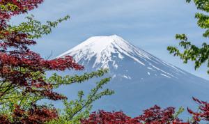 В Японии каждый седьмой молодой чиновник желает уволиться