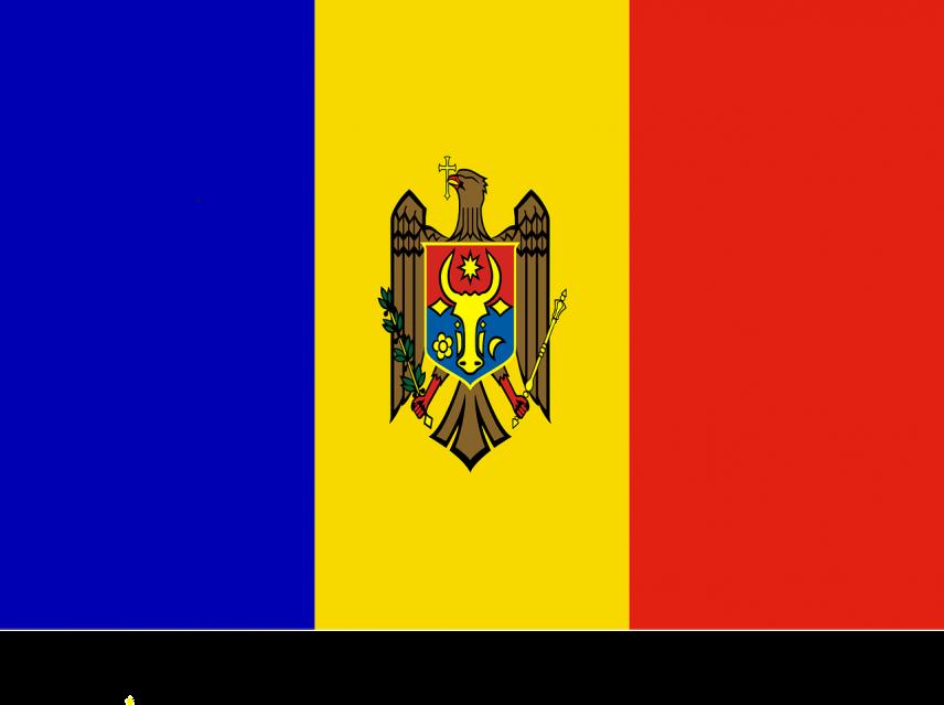Кабмин Молдовы продлил выплату пособия заразившимся COVID-19 госслужащим