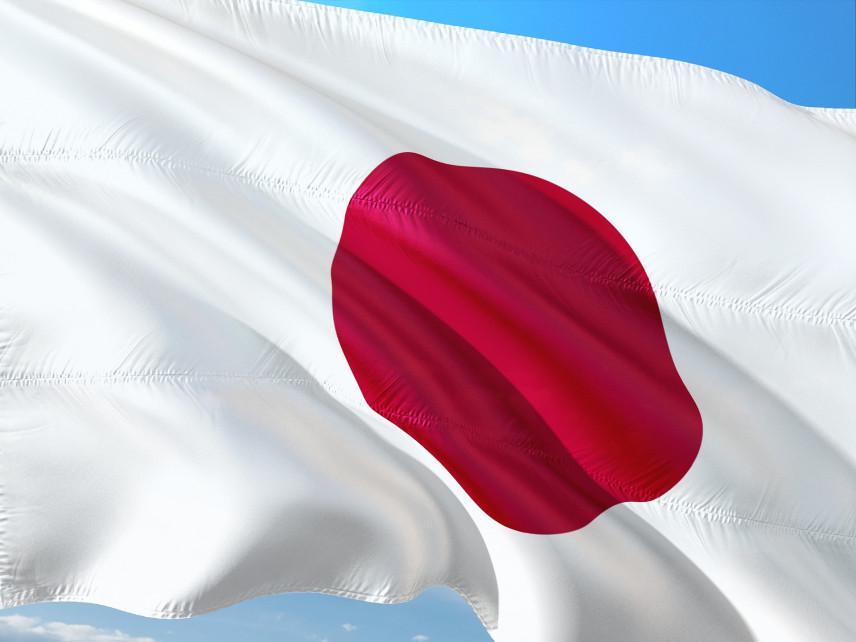 Зарплату госслужащих Японии предлагают оставить без изменений