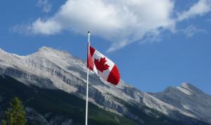 В Канаде участились случаи притеснения госслужащих на работе