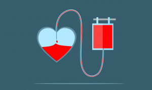 Молодые госслужащие Якутии стали донорами крови