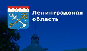 В правительстве Ленобласти отбирают кандидатов в молодежный кадровый резерв