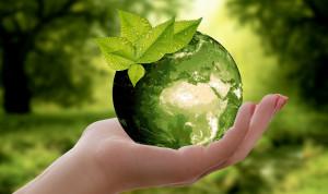 В Саратове создали правительственную рабочую группу по вопросам экологического благополучия